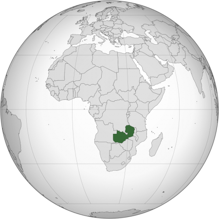 nigerian embassy visa application botswana